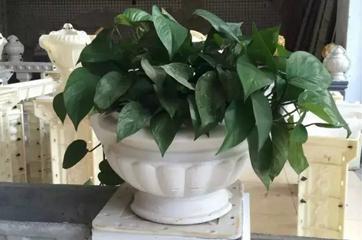 花盆模具工程案例